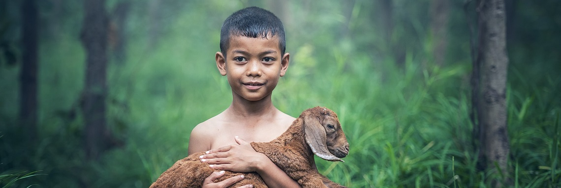 Boy with animal
